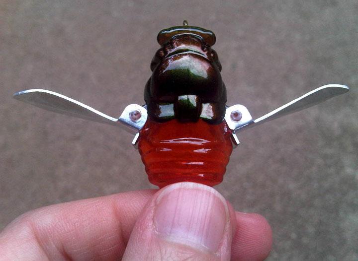 Green_head_cicada
