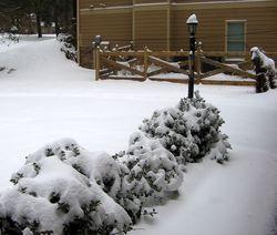 Winter_2011_07