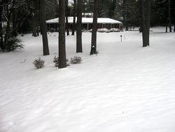 Winter_2011_02