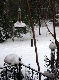 Winter_2011_06