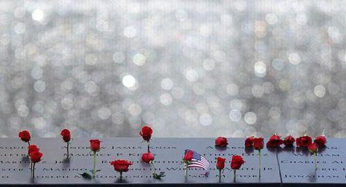 Roses_Sept11_2012