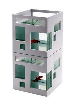 Fish_apartment_02