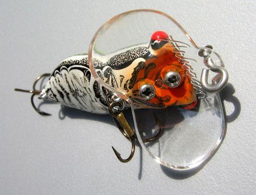 Arbogast: Summer Locust