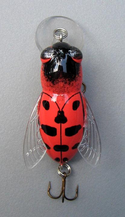 Rebel: lady bug bumblebug