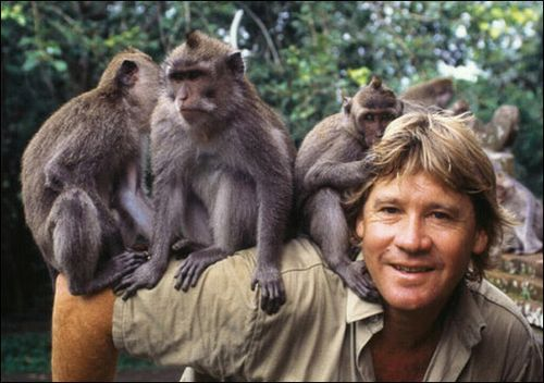 armload of monkies