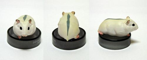 Djungarian hamster: pearl white
