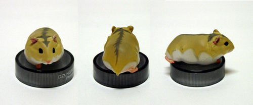 Djungarian hamster: pudding