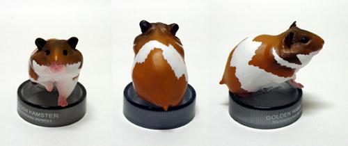 Golden hamster: brown & white