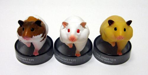 Golden hamsters trio