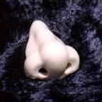 Nose_1